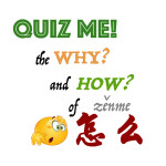 Exercises on '怎么' – the Why and How of Mandarin